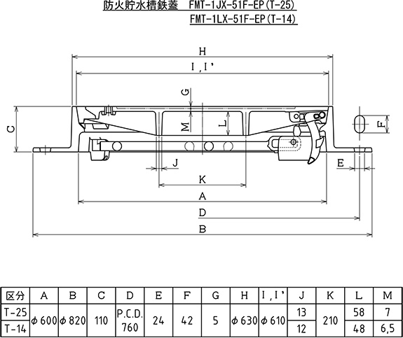 FMT-1JX-51F-EP